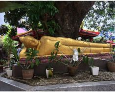 Vihara Dharmayana Temple Bali, Temple, Couch, Furniture, Home Decor, Settee, Decoration Home, Sofa, Room Decor