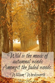 Wild is the music of Autumnal winds, Amongst the faded woods. Sassy Quotes, Life Quotes Love, Fall Quotes, Autumn Quotes Inspirational, Autumn Quotes Cozy, Winter Quotes, Life Sayings, Hello Autumn, Autumn Day