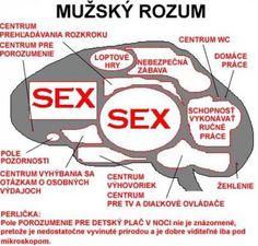 Mužský rozum.. Adult Humor, Motto, Haha, Jokes, Funny, Summer, Summer Time, Husky Jokes, Ha Ha