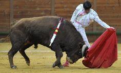 Juanito: Mi torero es El Juli y me gusta la torería de Morante. #ElJuli #toros #toreros #Morante - Mundotoro.com