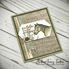 One Stampin' Mother Tucker Horse Cards, Crackle Painting, Paint Background, Men's Cards, Kids Cards, Stamping Up Cards, Animal Cards, Masculine Cards, Homemade Cards