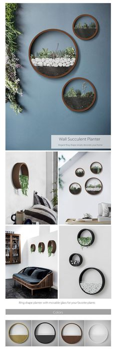 Wall Planters The Most Amazing Wall Decoration #waterplantsglass Wall Terrarium, Diy Wall Planter, Succulent Wall Diy, Diy Wood Planters, Metal Wall Planters, Vertical Succulent Gardens, Hanging Terrarium, Succulent Planters, Terrarium Ideas