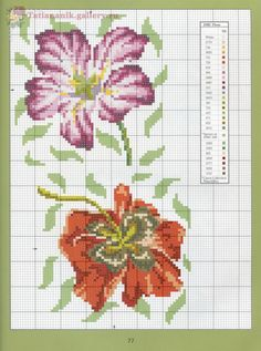 Gallery.ru / Фото #71 - *Marie Barber*Cross-Stitch Florals - Tatiananik