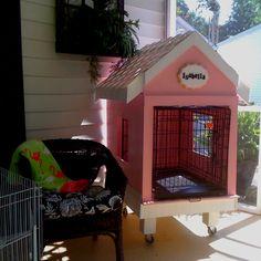 Rabbit house for my Lion Head rabbit, Isabella.