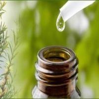 L'huile essentielle d'arbre à thé est une alternative naturelle (et bien souvent plus efficace) que les médicaments vendus sur ordonnance. Elle peut également remplacer de nombreux produits cosmétiques. Voici les 14 utilisations de l'huile essentielle d'arbre à thé que vous devez absolument connaître. Découvrez l'astuce ici : http://www.comment-economiser.fr/remedes-huile-essentielle-arbre-a-the.html