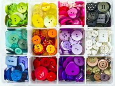 button organizer box