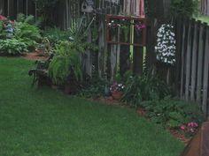 part of my shade garden