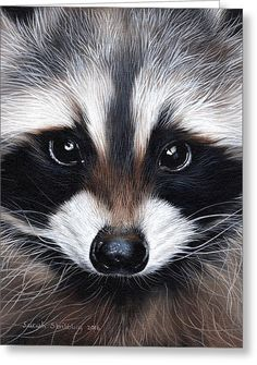 Revisit to one of my Raccoon oil paintin. Revisit to one of my Raccoon oil paintings, love painting trash pandas 🗑🐼 they've got the best faces! Raccoon Drawing, Raccoon Art, Cute Raccoon, Racoon, Baby Raccoon, Cute Funny Animals, Cute Baby Animals, Animals And Pets, Strange Animals
