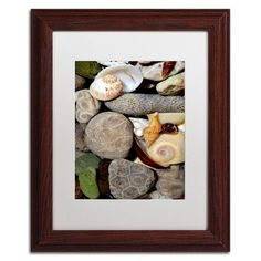 """Trademark Art 'PetoskeyStones ll' by Michelle Calkins Framed Photographic Print Size: 14"""" H x 11"""" W"""