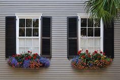 Charleston - Flower Box