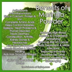 Moringa leaves are packed full of many nutrients the body needs, in a high bio-available food state. and provides the body with the nutrients it needs, while helping it to detoxify and get rid of unwanted elements. The BEST Moringa around is made by Green Moringa Benefits, Calendula Benefits, Lemon Benefits, Coconut Health Benefits, Moringa Powder, Moringa Oil, Vida Natural, Natural Beauty, Heart Attack Symptoms