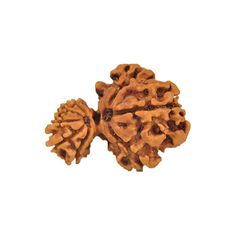 Rudraksha is a divine seed which is used by mankind for various problem like- money problem, love problem, marriage problem,   health problem etc. And these are found in the form of mukhi, different mukhi rudraksha is for different problems. So you should be careful   about buying rudraksha. You can Buy Rudraksha Online at ReligiousKart.com with proper consultation of the product and problem.