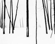 melisaki   69th Parallel 4  photo by Darren Almond, 2005
