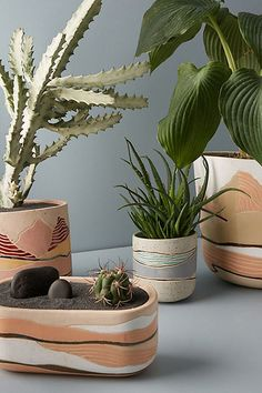 Indoor Vertical Gardening Tips and Ideas Organic gardening isn't always about food to eat. Some people enjoy growing flowers and other forms of plant life as well. House Plants Decor, Plant Decor, Pottery Painting, Pottery Art, Hand Painted Pottery, Potted Plants, Indoor Plants, Painted Plant Pots, Ceramic Plant Pots