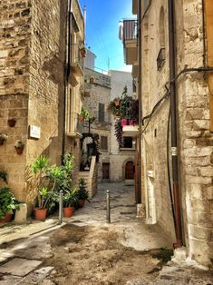 """annajewelsphotography: """"Bari - Italy (by annajewelsphotography) Instagram: annajewels """""""