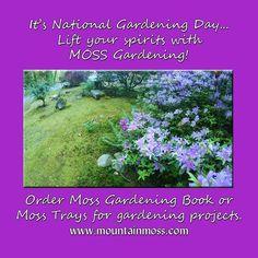Moss For Sale, Moss Garden, Gardening Books, Garden Projects, Spirit, Day
