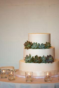 Love Days Photography #AldenCastle #ModernVintage #Wedding #Cake #Succulents