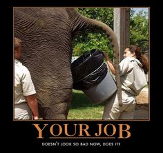 funny motivational posters | Your Job Funny Motivational Poster
