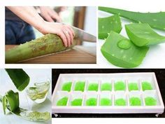 Great way to save aloe vera juice plus it has the added bonus of being icy cold when you apply it to your sunburn