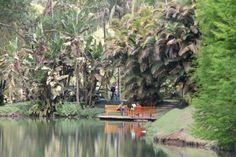 12 jardins bizarros e magníficos do mundo todo - Inhotim / MG / BRASIL