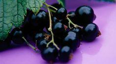 Byliny na čištění organismu, hlavně střev. Také tinktura z ořešáku! Medicinal Herbs, Health And Beauty, Detox, Spices, Fruit, Green, Plants, Food, Fitness