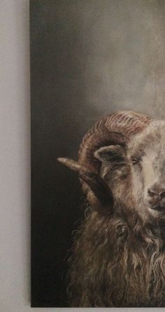 Lamb Pictures, Animal Portraits, Zodiac Horoscope, Animal Paintings, Central Park, Painting Inspiration, Sheep, Photo Art, Goats