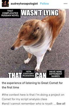 Great Comet Of 1812, The Great Comet, Theatre Nerds, Musical Theatre, Script Analysis, Funny Stuff, Midnight Radio, Tuck Everlasting