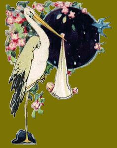 bird and stork illustration vintage - Google Search