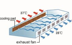 Wet curtain cooling system - Shanghai J.L Horticulture and Agriculture Supplies<