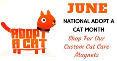 """""""June is Adopt a Cat Month """" If you are one of the millions of cat lovers in the country who wish to do something for the welfare of the homeless cats, this is the time to act.We have listed a few of our best seller cat care magnets for welfare of cats. Check out our blog for more #NationalAdoptACatMonth #adoptdontshop #rescuecats #kitten #cats #custommagnets #catcare"""