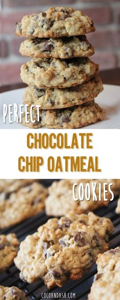 Chip Oatmeal Cookies - Coco and Ash These chocolate chip oatmeal cookies are THE BEST chocolate chip cookes you will ever eat! So soft and chewy!These chocolate chip oatmeal cookies are THE BEST chocolate chip cookes you will ever eat! So soft and chewy! Oreo Dessert, Cookie Desserts, Just Desserts, Delicious Desserts, Dessert Recipes, Yummy Food, Healthy Food, Pumpkin Dessert, Pumpkin Cheesecake
