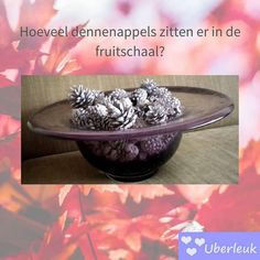 Herfst actie: raad jij hoeveel dennenappels er in deze (grote) fruitschaal zitten? De eerste met het juiste antwoord wint 25- shoptegoed.  #winnen #winactie #dennenappels #raadenwin