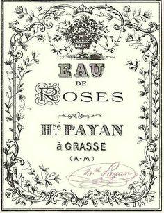 Eau de Roses Honoré Payan à Grasse ~~ Antique Vintage French Apothecary Perfume Label; French ephemera