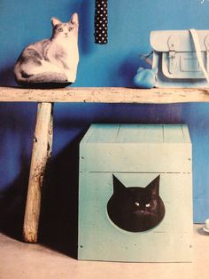 Cute & Colorful DIY Cat Box, can be used to cover up litter box Animal Projects, Diy Projects, Deco Turquoise, Litter Box Covers, Diy Casa, Cat Crafts, Cat Furniture, Diy Stuffed Animals, Crates