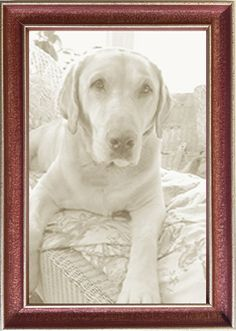 Italian thin wood red picture frame in great colors, available as easel backs or wall hanging, custom sizes. Made in USA by Museum Facsimiles