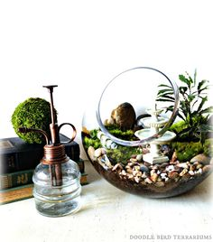 English Garden Terrarium with Miniature Path, Fountain, Tree in a Large Decorative Glass Orb