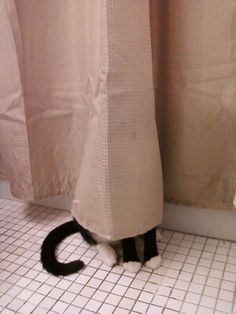 Hide and seek anyone?