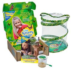 Original Butterfly Garden with Live Cup of Caterpillars Insect Lore http://www.amazon.com/dp/B00WE0OODI/ref=cm_sw_r_pi_dp_mgNbxb0ZZB0NB