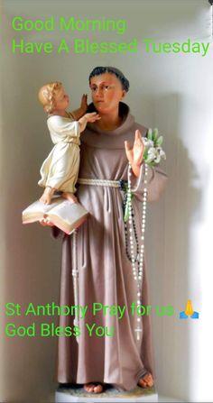 Saint Anthony Of Padua, Pray For Us, God Bless You, Good Morning, Tuesday, Saints, Blessed, Sari, Anton