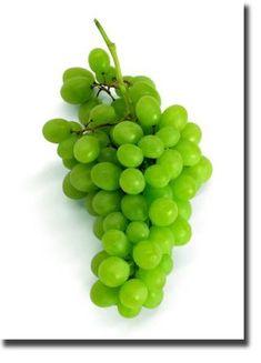 How to Grow Grapes  #fruit #gardening
