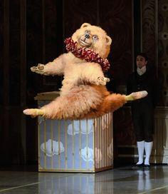 Boston Ballet Dancing Bear