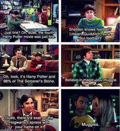 The Big Bang Therory & HARRY POTTER!