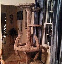 must. have. Star Trek cat condo OMC!!!!