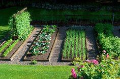 Veggie garden layout idea