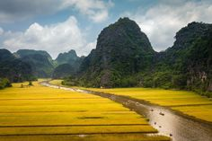 """Tam Cốc is a popular tourist destination near the city of Ninh Bình in northern Vietnam. The Tam Cốc (""""three caves"""") portion is a three-hour excursion by small boat along the Ngô Đồng River, beginning at the village of Van Lam and proceeding through a scenic landscape dominated by rice fields and karst towers. The route includes floating through three natural caves (Hang Cả, Hang Hai, and Hang Ba), the largest of which is 125m long with its ceiling about 2m high above the water."""