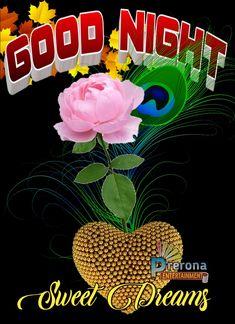 Good Night All, Good Night Sleep Tight, Good Night Image, Good Night Quotes, Day For Night, Good Morning Flowers Gif, Good Morning Msg, Wednesday Morning Greetings, Goodnight Quotes Inspirational