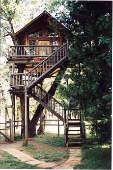 I want to live in a tree house!