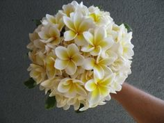 A dome bouquet has been extremely popular over the past 5 years.  The shape is literally a dome either very tightly compacted together or more loosely gathered.  The dome suits a more formal wedding gown and the best flowers for this design have lots of tight petals such as roses, peonies, stephanotis, orchids, roses, and daffodils. It also suits a summery and exciting beach wedding idea when you choose Frangipanis to create a pretty and unexpected bouquet design. Port Douglas Wedding…
