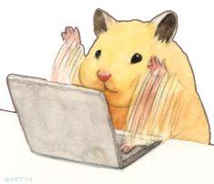 Cute Animal Drawings, Cute Drawings, Pollo Animal, Hamster Kawaii, Cute Hamsters, Hippie Art, Cute Cartoon Wallpapers, Cute Little Things, Cute Love