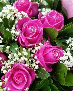 🌹 Wax Roses 🌹 Pink Sparkle Roses 🌹 4 March... International Women's Day 🌹  #waxedroses #waxflower #roses #pinkroses #pink #sparkle #gypsophila #shadesofpinks #uniquecolor #nofilters #love #loveroses #showyourlove #bouquet #gettingready #8march #womensday #2018 #floristshop #florist #thessaloniki #greece #anthostheartofflowers Wax Flowers, Gypsophila, Thessaloniki, 8th Of March, Unique Colors, Ladies Day, Pink Roses, Flower Art, Greece